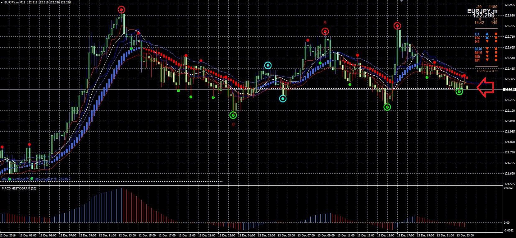 tín hiệu hama_buy_reversal